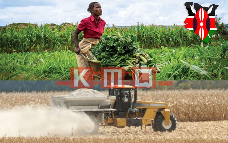 Agricultural Lime - Kenya Marble Quarries Ltd KMQ